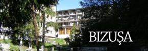 Bizusa-Salaj