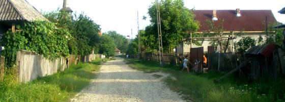 Podis-De-a lungu satului 2