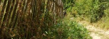 Barsauta-satul condamnat la vesnicie