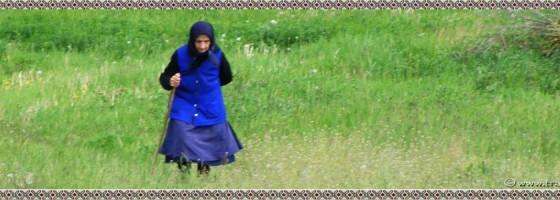 Toplita-De-a lungu satului-foto1
