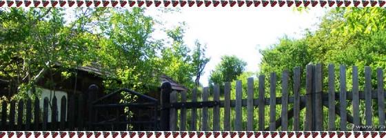 Valisoara-De-a lungu satului-Foto1
