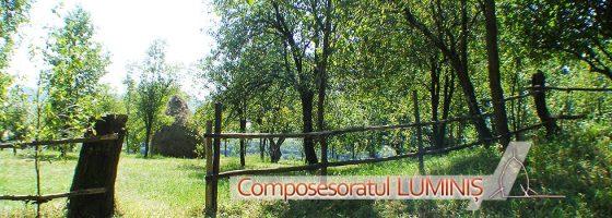 Composesoratul Luminis-Foto